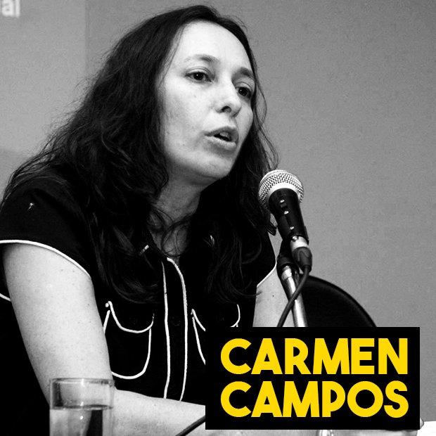 Entrevista com Carmen Hein de Campos